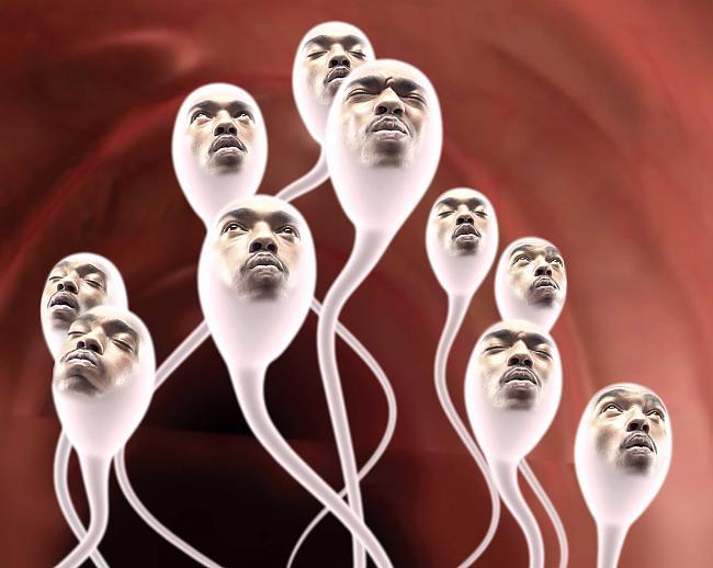 muzhchina-kak-spermatozoid
