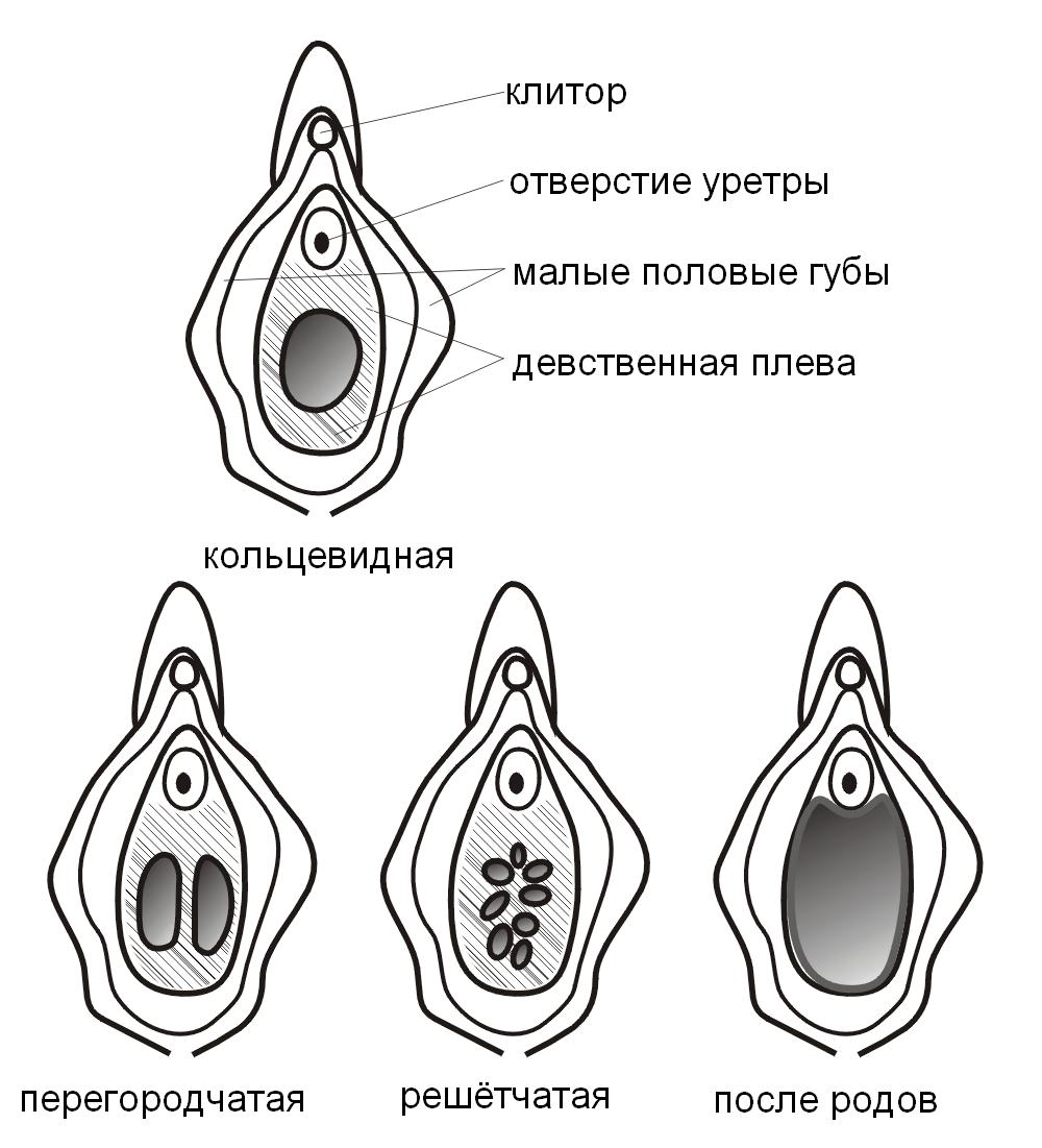 konchayut-vnutr-starim