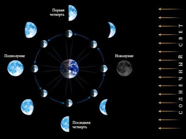 переезд на луне в тельце