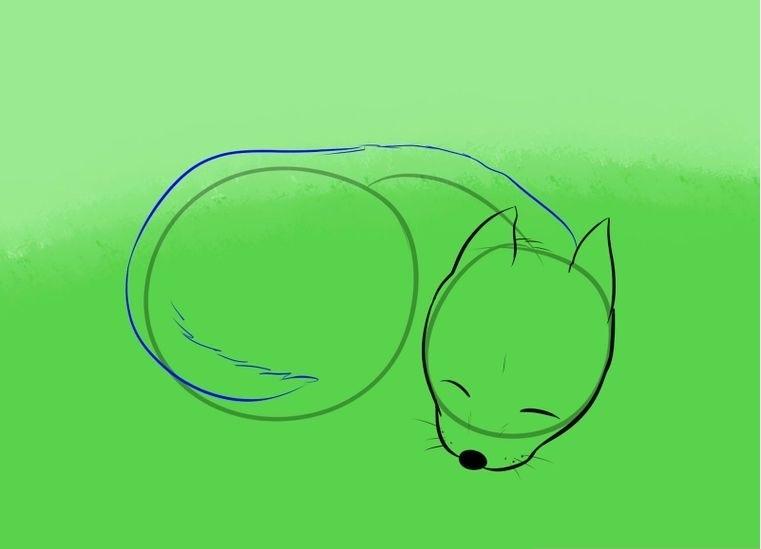 Поэтапное рисование спящей собаки: набросок — шаг 3