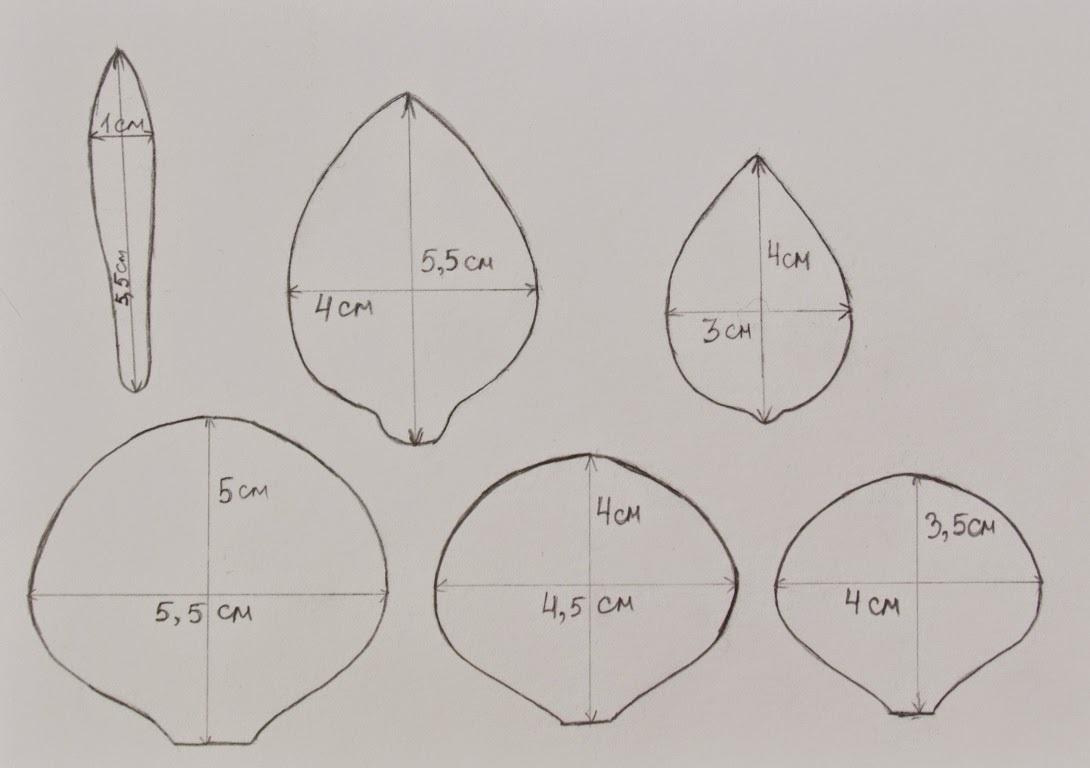 Фото шаблоны для цветов из фоамирана