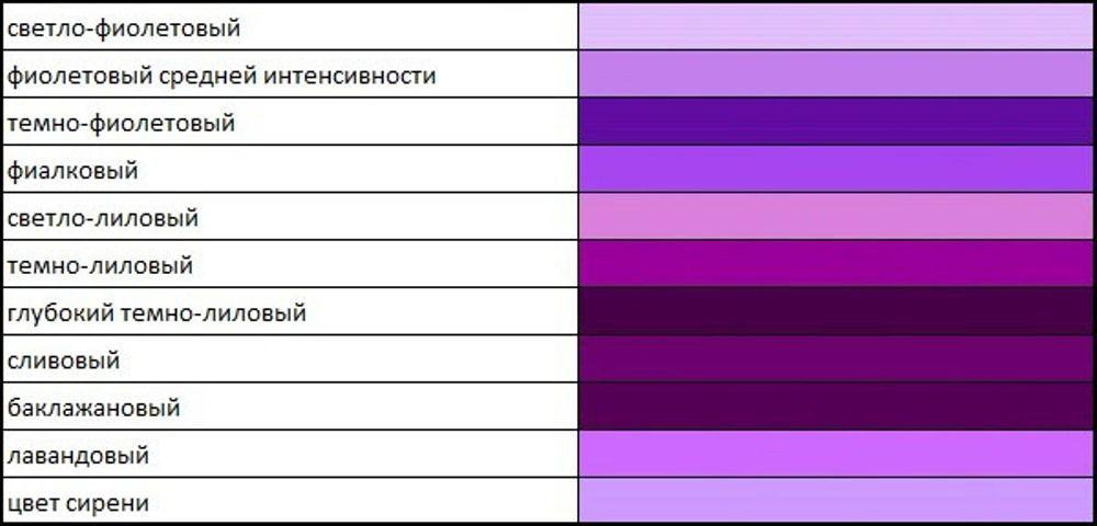 фото лилового цвета