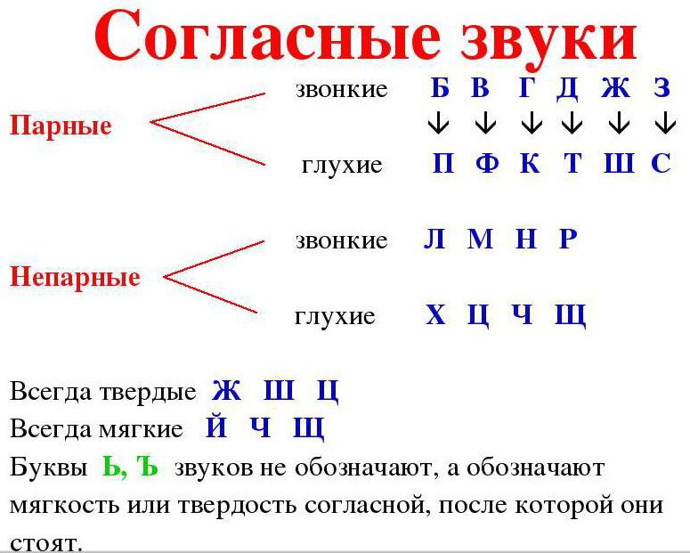 Транскрипция к слову пирог