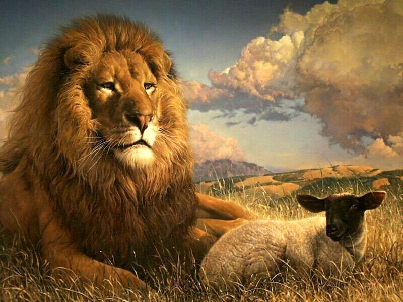 как мужчину льва сделать счастливым
