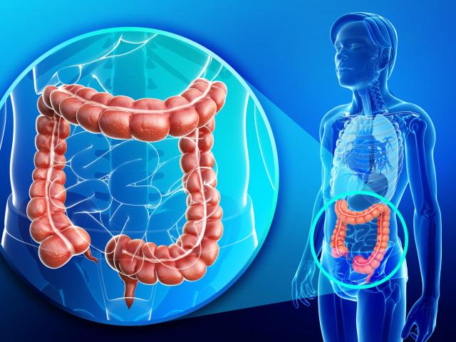 Посттравматический артроз голеностопного сустава схема лечения прибором парацельс как жить с искуственным суставом
