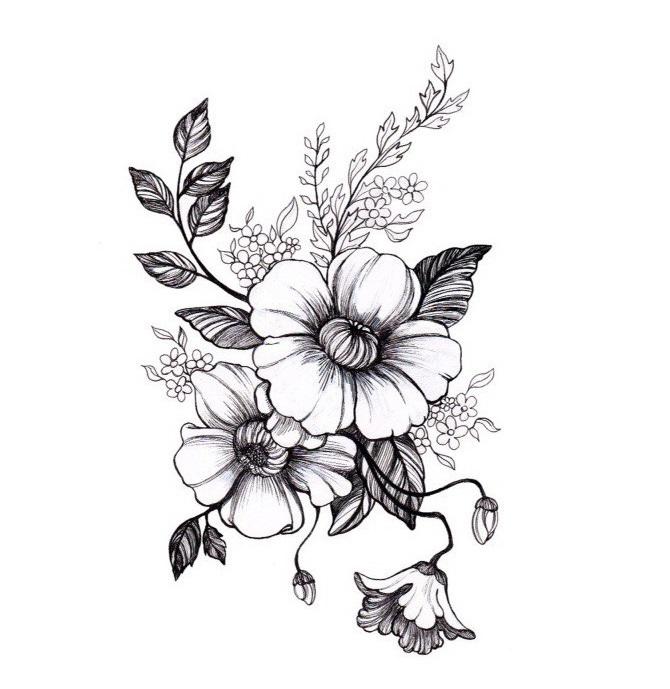 какие бывают комнатные цветы название
