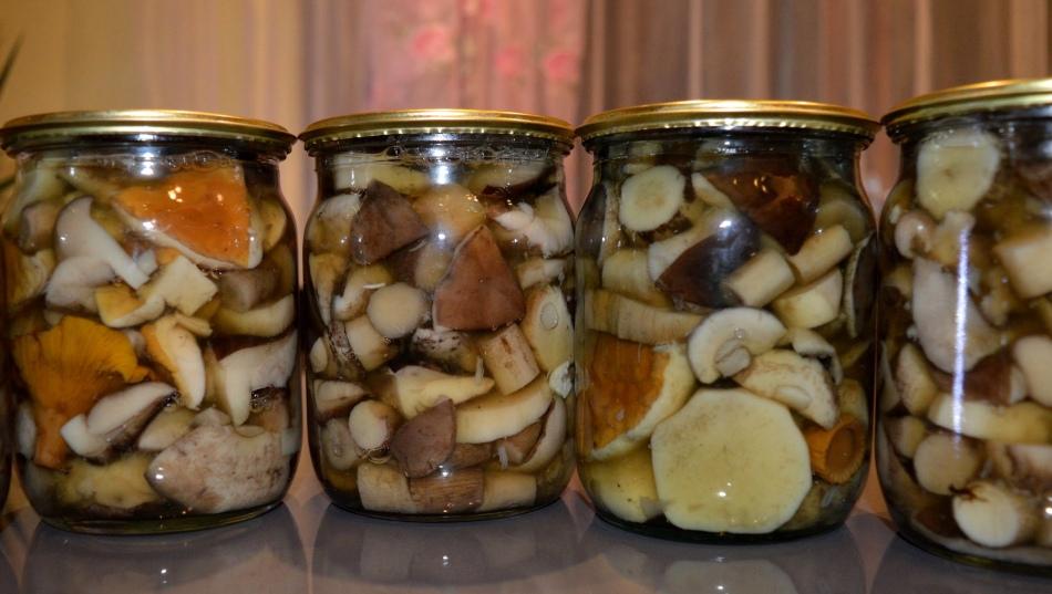 Маринование белых грибов в домашних условиях рецепты 936