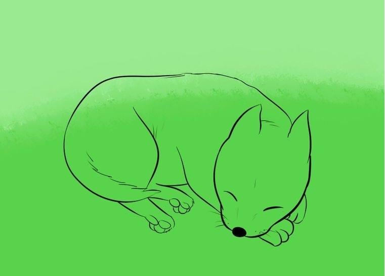 Поэтапное рисование спящей собаки: основной рисунок — шаг 7