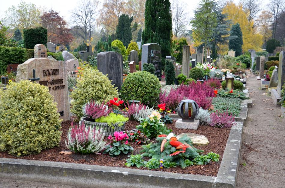 Каменная роза на кладбище фото купить бетон памятники южно сахалинск