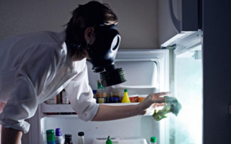 Запах в холодильнике. Как убрать неприятный запах из холодильника? Поглотители запаха для холодильника