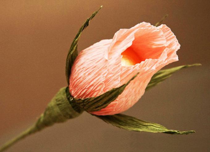 Розы нераспустившиеся из гофрированной бумаги