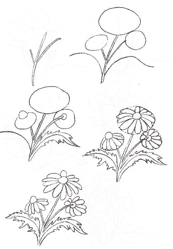 Ромашки схема рисовать