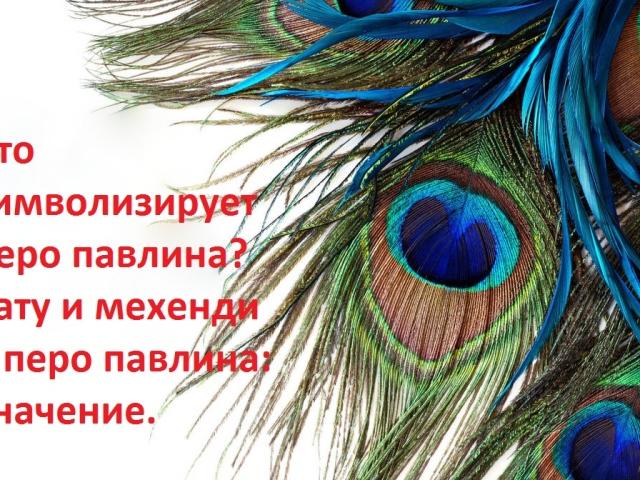 Как сделаны перья павлина 58