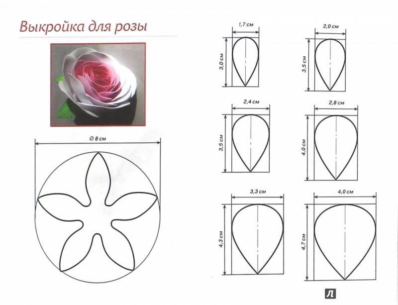 Выкройки цветов из фома