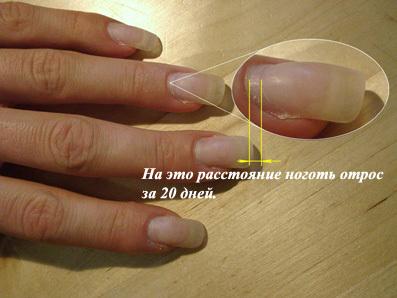 Фото отросших нарощенных ногтей