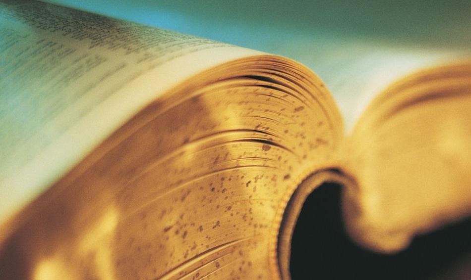 В словаре можно найти общее определение термина