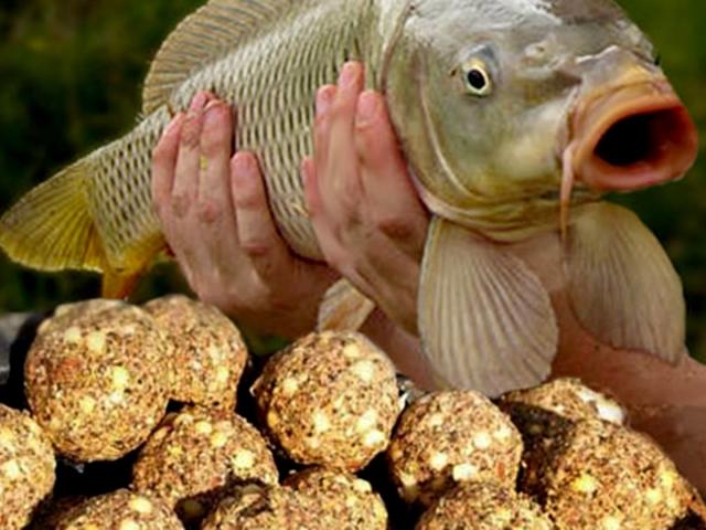 как приготовить растительные приманки для рыбы видео