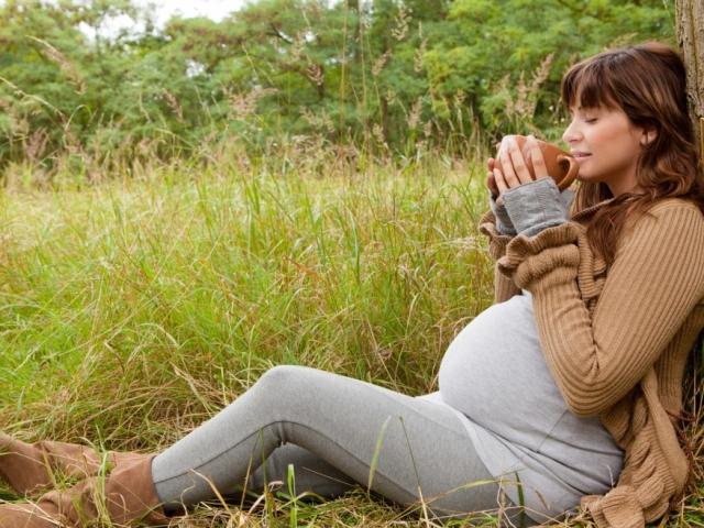 Травы от беременности