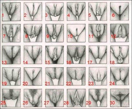 Helly Hansen размеры и формы вагины ваши вещи радуют