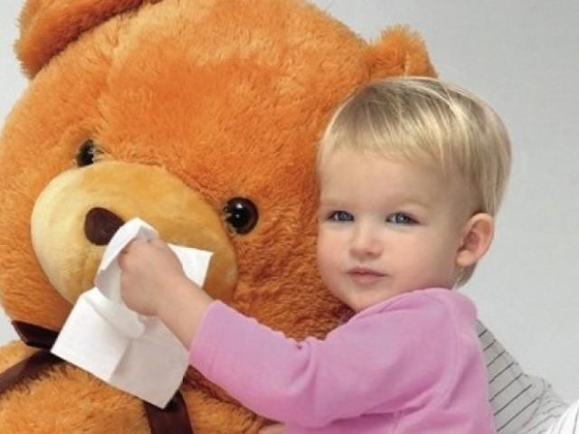 Развивающие игрушки для ребенка 1.5 года фото
