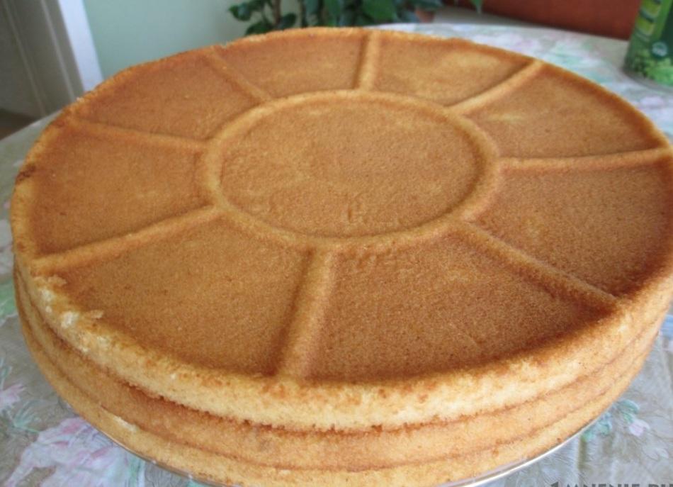 Бисквитные коржи для торта 2