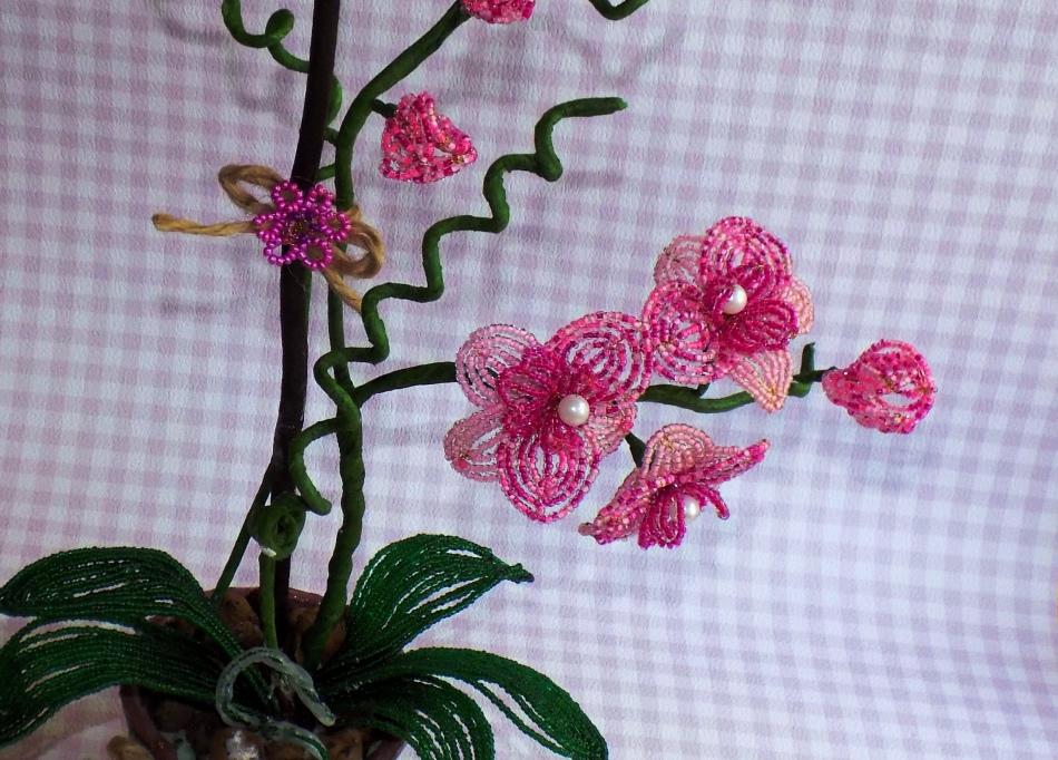 Орхидеи из бисера видеоуроки