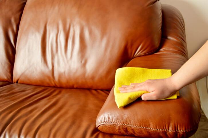 Чем очистить диван от мочи в домашних  528