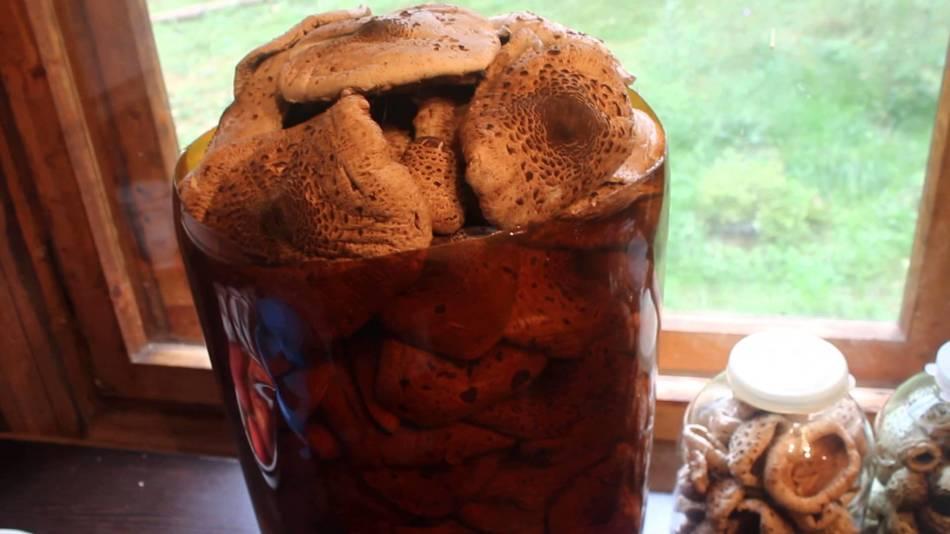 Сушеные грибы храним в банке