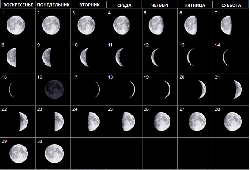 что фазы луны благоприятные для операций организации ВЫСШИЕ КУРСЫ