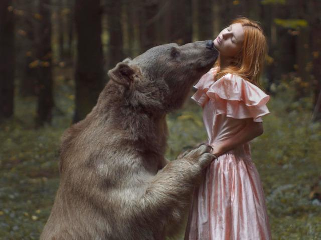 к чему снится проснувшийся медведь