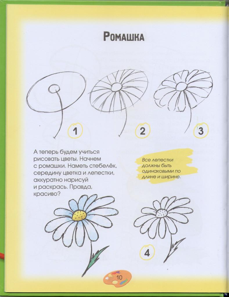 Урок как рисовать ромашку