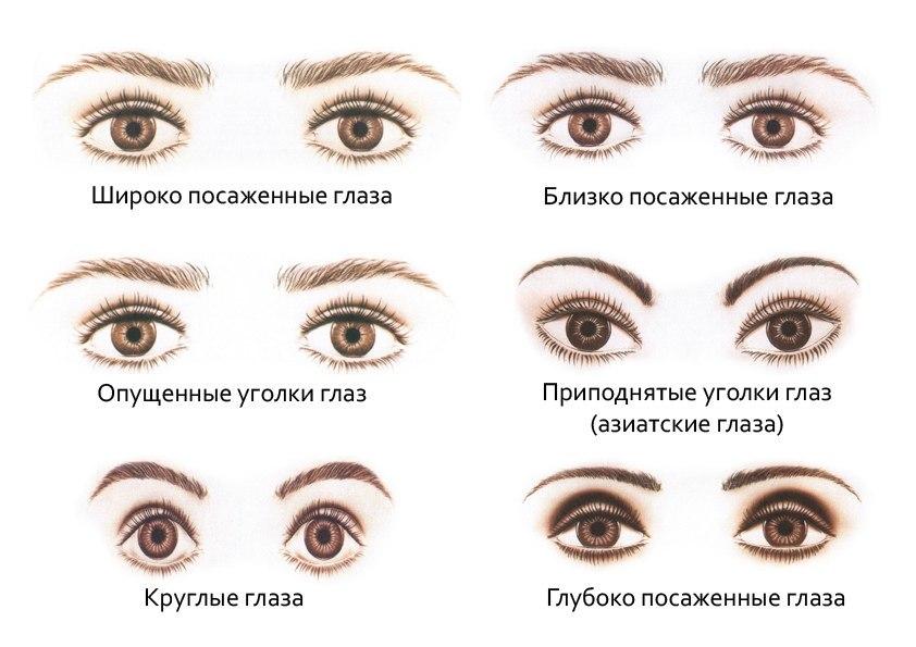 Виды глаз и бровей
