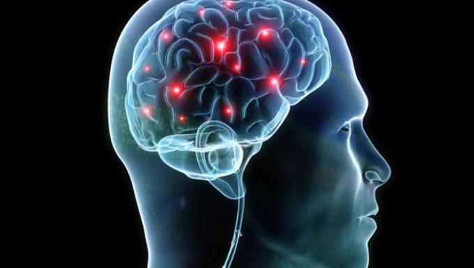 Синхронизация мозга