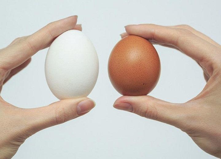Размер яиц зависит не от цвета скорлупы!
