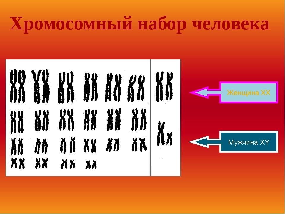 ab13e3a9e48d5e7c46050bf05ea596ab.jpg