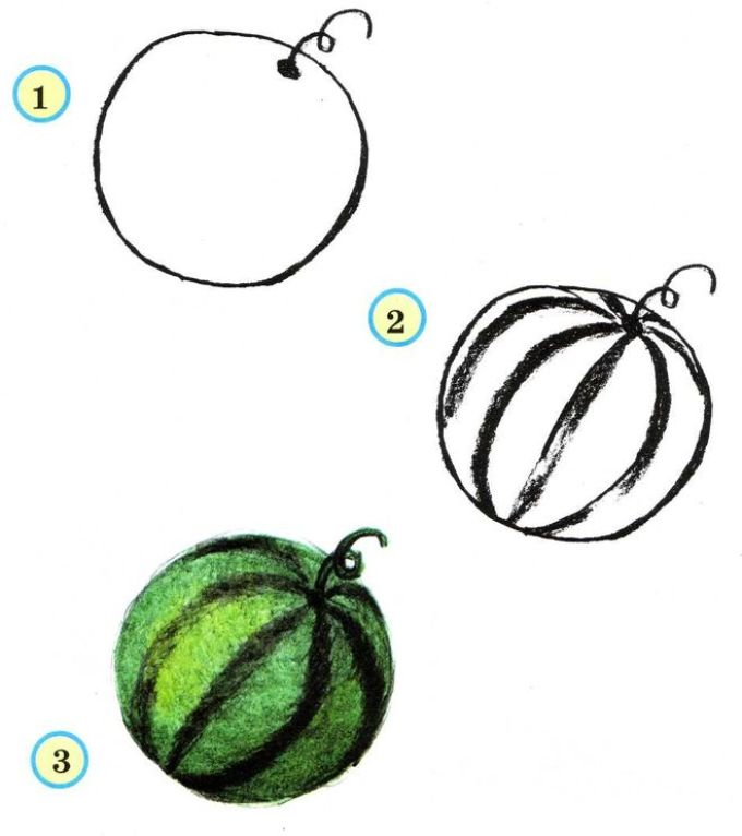 Рисование овощей в схемы