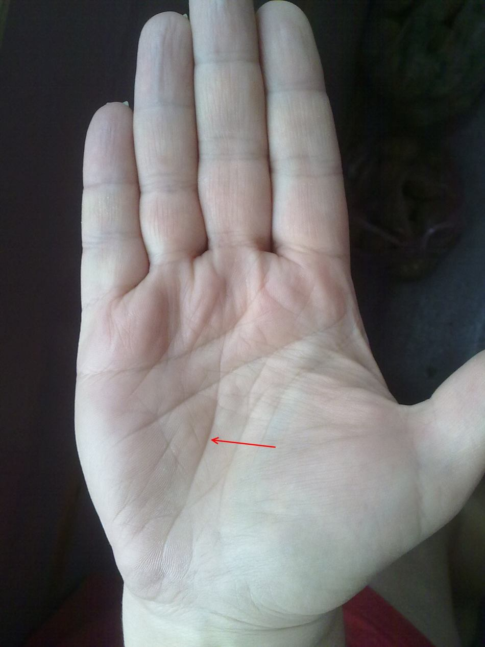 Линия детей на левой руке фото
