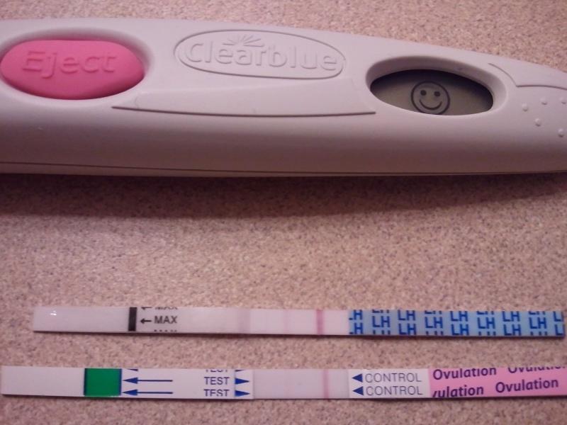 Как определить в первые дни беременность