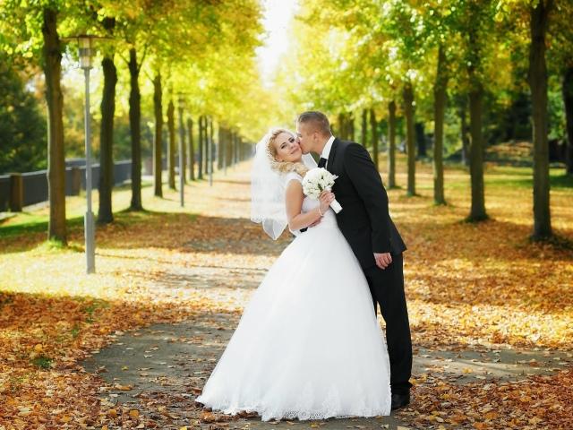 Современные невесты без трусов фото