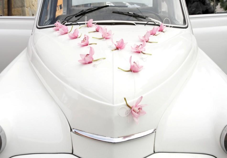 Как украсить капот машины своими руками на свадьбу?