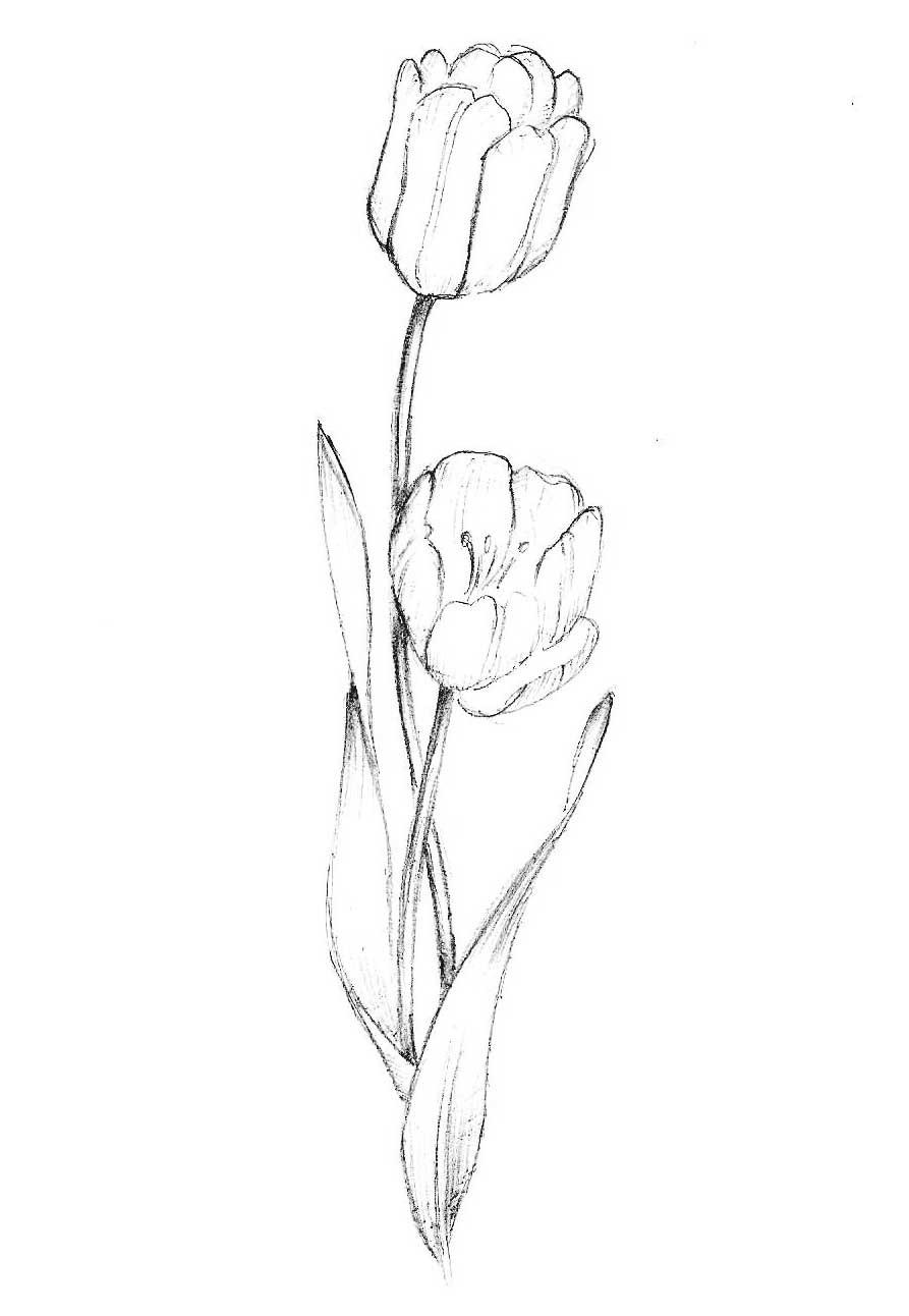 Рисунок «Цветок» 353