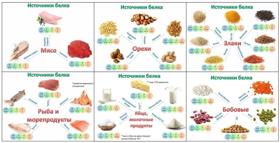 Продукты где находиться белок