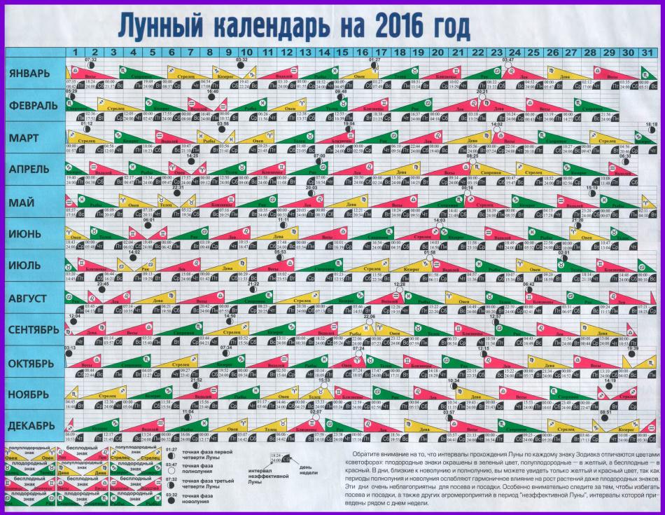 лунный календарь на 2016 год май термобелье CRAFT сочетает