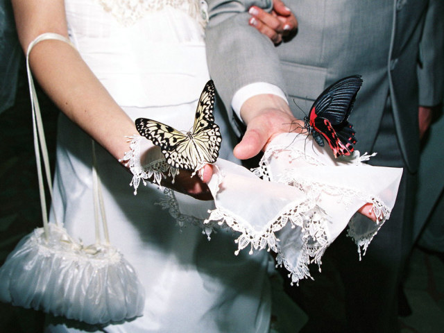 Необычные подарок от друзей на свадьбу