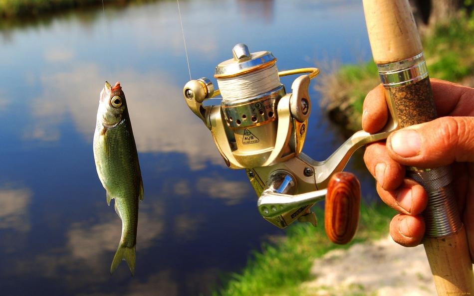 Когда отменят платную рыбалку 2018