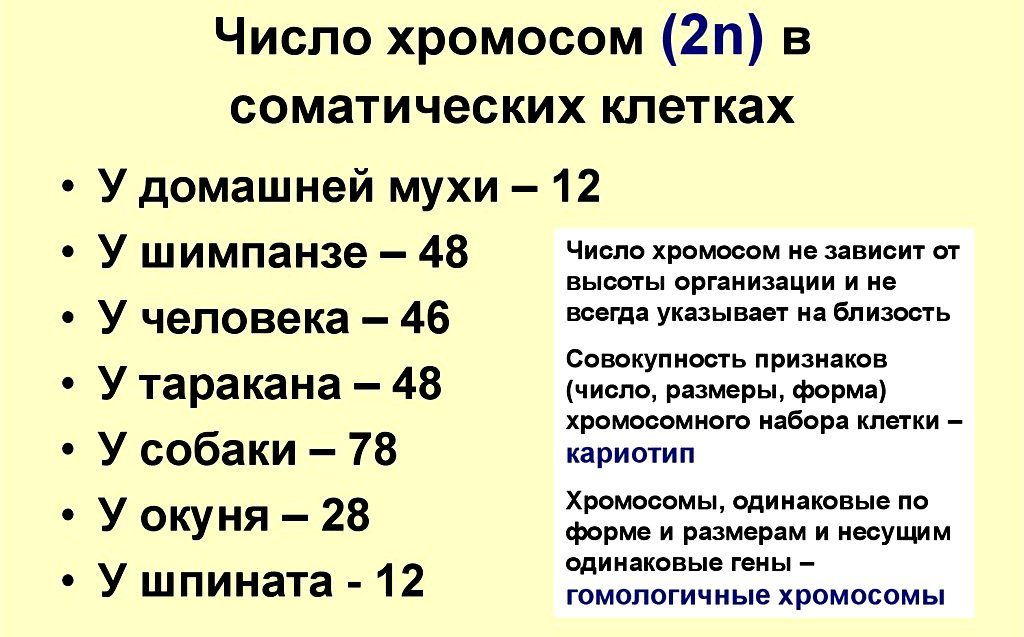 e0e952960aac21431e52c2e0ed513931.jpg