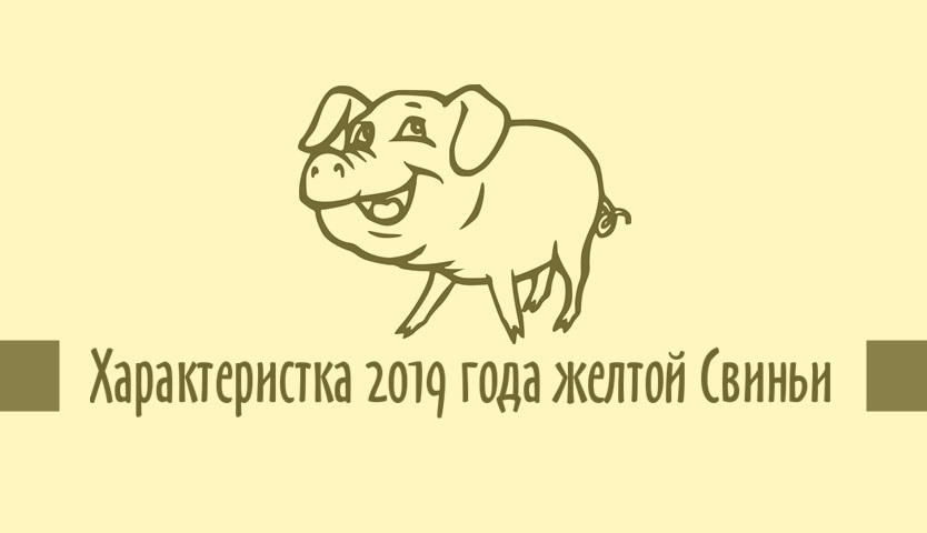 Гороскоп на 2019 год по году рождения