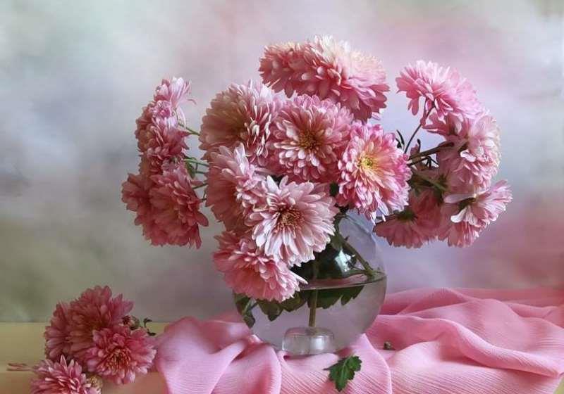 Роскошные хризантемы в вазе