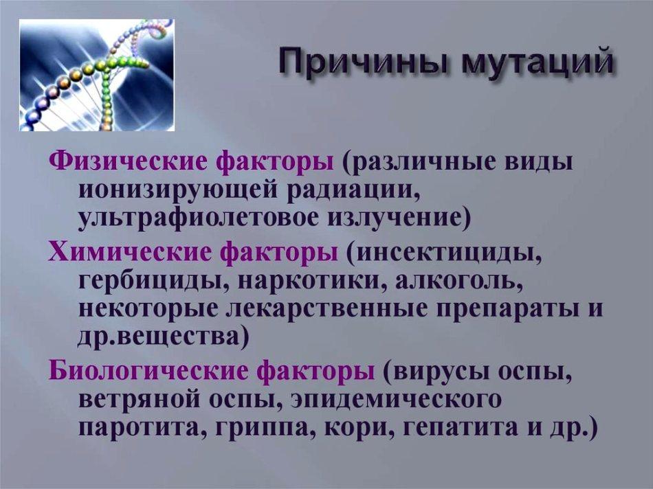ed8e6b4e3933f1eff2681fc2d9ced040.jpg