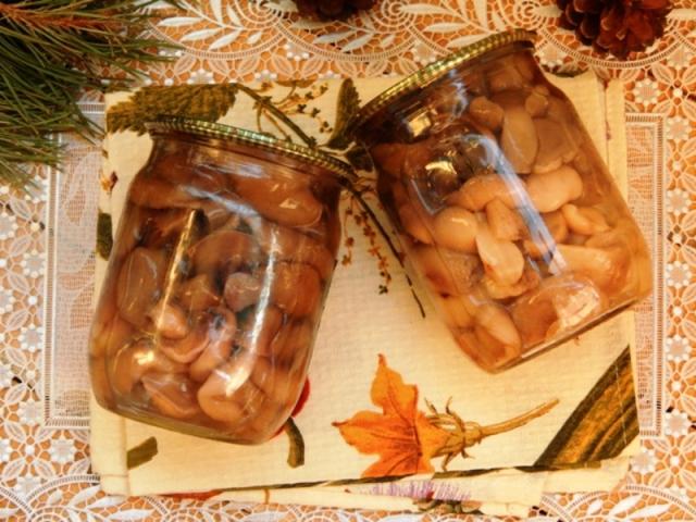 Маринованные маслята пошаговый рецепт с картинками